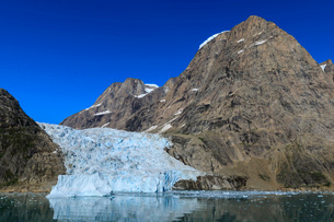 Tidewater glacier, South Skjoldungen Fjord, glorious weather, remote South East Greenland, Denmark,の写真素材 [FYI03791921]