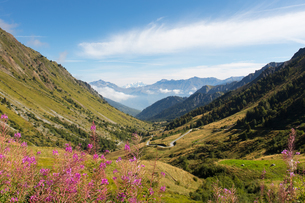 A typical view of the French Alps in the summer, with blue skies, Col du Glandon, Dauphine Alps, Savの写真素材 [FYI03792042]