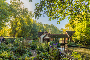 A view of Duck Island Cottage by St. James's Park lake in St. James's Park, London, England, Unitedの写真素材 [FYI03792231]