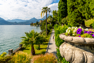 View of lake from Botanical Gardens in the village of Vezio, Province of Como, Lake Como, Lombardy,の写真素材 [FYI03792260]