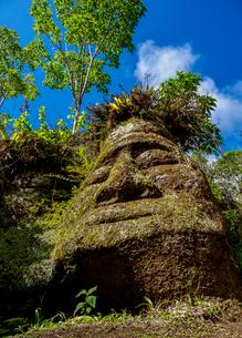 Face Sculpture in Tuff Rock, Asilo de la Paz, Highlands of Floreana (Charles) Island, Galapagos, UNEの写真素材 [FYI03792426]