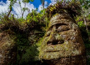 Face sculpture in Tuff rock, Asilo de la Paz, Highlands of Floreana (Charles) Island, Galapagos, UNEの写真素材 [FYI03792427]