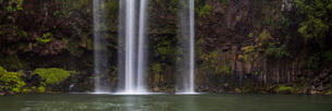 Whangarei Falls, a popular waterfall in the Northlands Region of North Island, New Zealand, Pacificの写真素材 [FYI03792876]