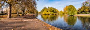 Autumn in Regents Park, one of the Royal Parks of London, England, United Kingdom, Europeの写真素材 [FYI03792948]