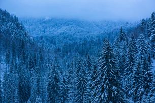 Winter landscapes of Carpathian Mountains near Brasov, Brasov County, Romania, Europeの写真素材 [FYI03792987]