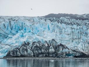 Lamplugh Glacier, a tidewater glacier in Glacier Bay National Park and Preserve, Southeast Alaska, Uの写真素材 [FYI03793073]