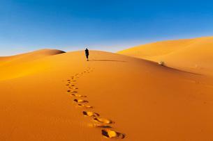 Sand Dunes, Erg Chebbi, Sahara Desert, Southern Morocco, Morocco, North Africa, Africaの写真素材 [FYI03793328]