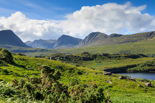 Mountains by fields in Coigach, Scotland, Europeの写真素材 [FYI03793481]