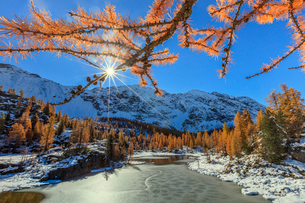 Red larches frame the frozen Lake Mufule, Malenco Valley, Province of Sondrio, Valtellina, Lombardy,の写真素材 [FYI03793632]