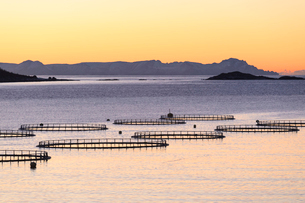 Sunset lights up the fish tanks of codfish and salmon in the cold sea of Torsken, Senja, Troms, Norwの写真素材 [FYI03793640]