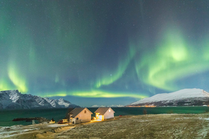 The Northern Lights (aurora borealis) and stars illuminate the wood houses called Rorbu by the sea,の写真素材 [FYI03793642]