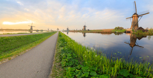 Panorama of the typical windmills reflected in the canals at dawn, Kinderdijk, UNESCO World Heritageの写真素材 [FYI03793664]