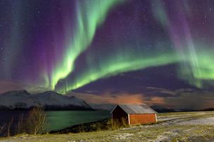 Northern Lights illuminates the wooden cabin at Svensby, Lyngen Alps, Troms, Lapland, Norway, Scandiの写真素材 [FYI03793781]