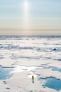 Watchguard at North Pole, Arcticの写真素材 [FYI03793868]