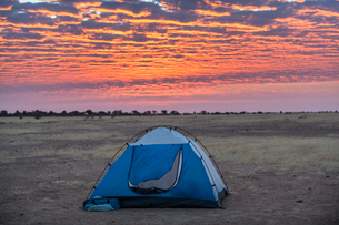 Camping under a dramatic morning sky in the Sahel, Chad, Africaの写真素材 [FYI03793885]