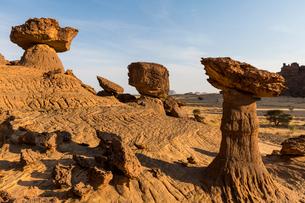 The mushroom rock formations, Ennedi Plateau, UNESCO World Heritage Site, Ennedi region, Chad, Africの写真素材 [FYI03793928]