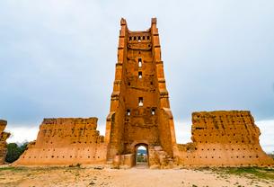 Mansourah Mosque, Mansourah castle, Tlemcen, Algeria, North Africa, Africaの写真素材 [FYI03794009]