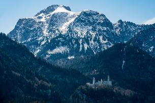 Castle Neuschwanstein, with the Alps behind, Schwangau, Bavaria, Germany, Europeの写真素材 [FYI03794029]