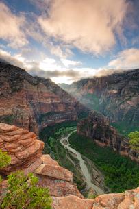 Angels Landing, Zion National Park, Utah, United States of America, North Americaの写真素材 [FYI03794202]