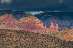 Red-Rock buttes, Sedona, Arizona, United States of America, North Americaの写真素材 [FYI03794238]