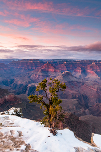 Sunset over Grand Canyon South Rim, UNESCO World Heritage Site, Arizona, United States of America, Nの写真素材 [FYI03794318]