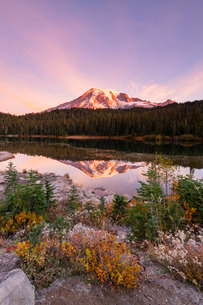 Reflection Lake, Mount Rainier National Park, Washington State, United States of America, North Amerの写真素材 [FYI03794425]