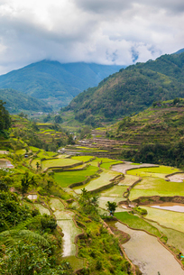 Hapao, Luzon, Philippines, Southeast Asia, Asiaの写真素材 [FYI03794504]