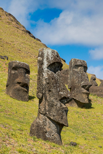 Moai heads of Easter Island, Rapa Nui National Park, UNESCO World Heritage Site, Easter Island, Chilの写真素材 [FYI03794591]