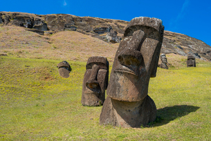 Moai heads of Easter Island, Rapa Nui National Park, UNESCO World Heritage Site, Easter Island, Chilの写真素材 [FYI03794597]