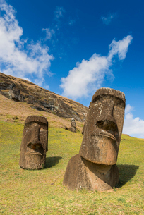 Moai heads of Easter Island, Rapa Nui National Park, UNESCO World Heritage Site, Easter Island, Chilの写真素材 [FYI03794601]