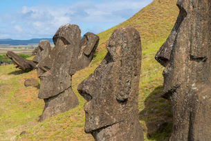 Moai heads of Easter Island, Rapa Nui National Park, UNESCO World Heritage Site, Easter Island, Chilの写真素材 [FYI03794618]
