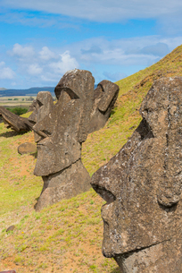 Moai heads of Easter Island, Rapa Nui National Park, UNESCO World Heritage Site, Easter Island, Chilの写真素材 [FYI03794619]