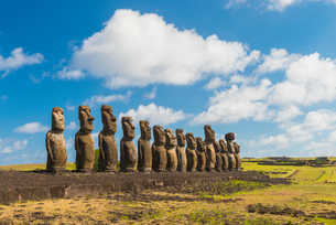 Moai heads of Easter Island, Rapa Nui National Park, UNESCO World Heritage Site, Easter Island, Chilの写真素材 [FYI03794622]
