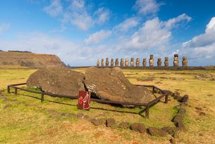 Moai heads of Easter Island, Rapa Nui National Park, UNESCO World Heritage Site, Easter Island, Chilの写真素材 [FYI03794635]