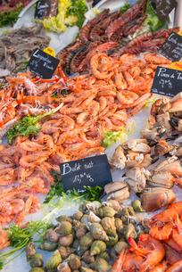 Fresh seafood, Aix en Provence, Bouches du Rhone, Provence, Provence-Alpes-Cote d'Azur, France, Euroの写真素材 [FYI03794680]