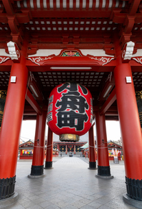 Sensoji Temple in Cherry blossom season, Tokyo, Japan, Asiaの写真素材 [FYI03794713]