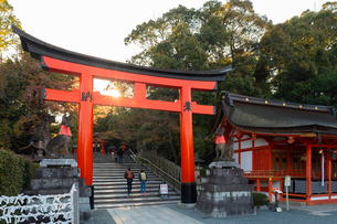 Fushimi Inari Taisha shrine and torii gates, Kyoto, Japan, Asiaの写真素材 [FYI03794734]
