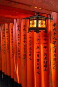 Fushimi Inari Taisha shrine and torii gates, Kyoto, Japan, Asiaの写真素材 [FYI03794736]