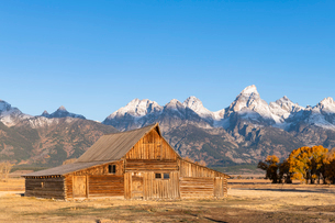 Mormon Row and Teton Range, Grand Teton National Park, Wyoming, United States of America, North Amerの写真素材 [FYI03794810]