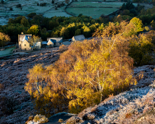 Farm house and silver birch tree on a frosty morning in autumn, Peak District National Park, Derbyshの写真素材 [FYI03795096]