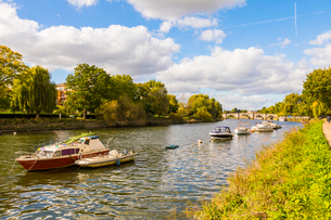 Boats on River Thames in Richmond, England, Europeの写真素材 [FYI03795211]