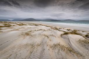 Sand dunes, Luskentyre Beach, West Harris, Outer Hebrides, Scotland, United Kingdom, Europeの写真素材 [FYI03795283]