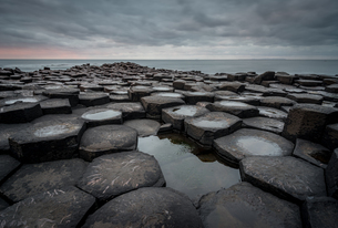 Basalt columns of the Giant's Causeway at sunset, UNESCO World Heritage Site, County Antrim, Northerの写真素材 [FYI03795299]