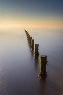 Groynes, Brean Beach, Somerset, England, United Kingdom, Europeの写真素材 [FYI03795302]