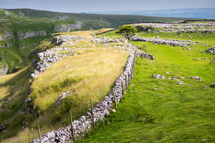 Above Malham, Yorkshire Dales, Yorkshire, England, United Kingdom, Europeの写真素材 [FYI03795333]