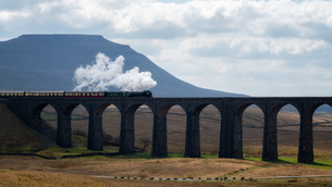Steam train crossing the Ribblehead Viaduct, Yorkshire Dales National Park, Yorkshire, England, Unitの写真素材 [FYI03795462]
