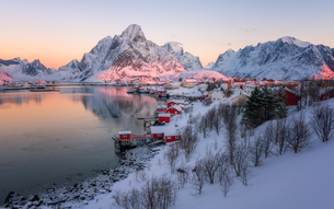 Reine fishing village in winter, Reinefjord, Moskenesoya, Lofoten Islands, Arctic, Norway, Europeの写真素材 [FYI03795499]