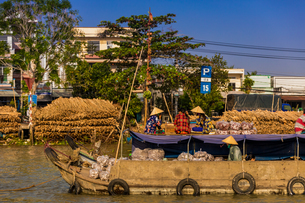 The floating market outside of Can Tho, Vietnam, Indochina, Southeast Asia, Asiaの写真素材 [FYI03795670]