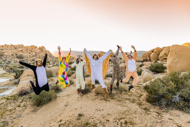 Group of friends in spirit animal onesies celebrating the new year in Joshua Tree, California, Uniteの写真素材 [FYI03795685]