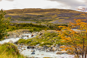 Beautiful scenery in Torres del Paine National Park, Patagonia, Chile, South Americaの写真素材 [FYI03795729]
